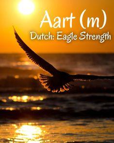 Dutch Names, Eagle, Movie Posters, Movies, Films, Film Poster, Cinema, Movie, Film