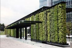 15 jardines verticales de lo más inspiradores y efectos positivos