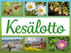 Tulostettava Kesälotto ryhmätoimintaan   RyhmäRenki Science And Nature, Bingo, Teaching, Flowers, Plants, Summer, Sun, Games, Summer Recipes