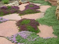 Image result for gardens accented by pathways & pots