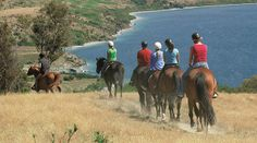 Useful information about Horse Riding on the Costa Blanca on the Spanish Costas,including Hipica Ondara and Rancho la Ofra horse riding schools Horse Riding School, New Zealand South Island, Tour Tickets, Holiday Destinations, Trekking, Trip Advisor, Journey, Tours, Horses