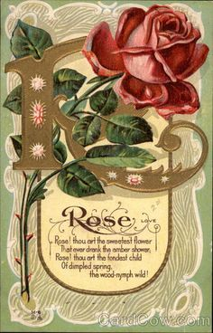 Rose, Love Rose! thou art the sweetest flower that ever drank the amber shower; Rose! thou art the fondest child Of dimpled spring the wood-nymph wild!