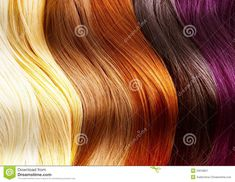 Hair Colors Palette stock image. Image of haircut, health - 23018827