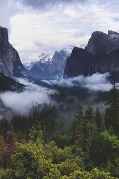 "almightynature: ""More nature photos at http://almightynature.tumblr.com """