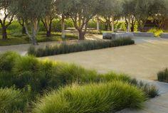 Landscaping Around House, Driveway Landscaping, Residential Landscaping, Modern Landscaping, Yard Design, Plant Design, Landscape Architecture, Landscape Design, Grass Alternative