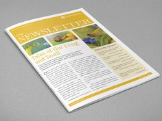 Best One Free And 4 Pages Ashley Business Account Newsletter Templates