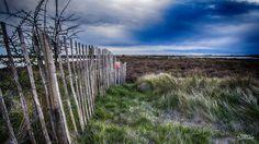 Lost Fences.