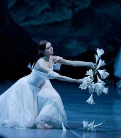 "08 February 2014 Sat, - Adolphe Adam ""Giselle (Les Wilis)"" (Ballet in 2 Acts) (Classical Ballet) - Mikhailovsky Classical Ballet and O. Ballet Images, Ballet Photos, Ballet Art, Ballet Dancers, Ballet Studio, Dancers Body, Russian Wedding, Pretty Ballerinas, Ballet Beautiful"