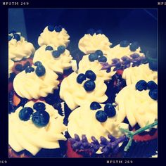 Blueberry Cupcakes @ Soho