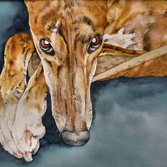 ~ Greyhound Painting ~