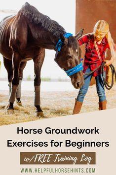Horse Groundwork Exercises for Beginners w/FREE Training Log