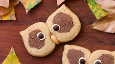 Cream and cocoa shortbread owl cookie recipe