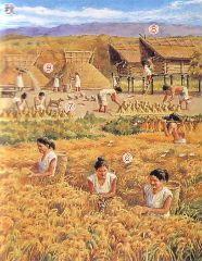 culturas jomon yayoi kofun - Buscar con Google