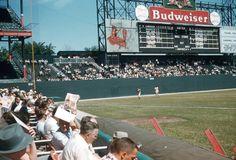 19302e27848b 66 Best Sportsman s Park images