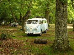 VW Campervan Dylan campping in the woods.