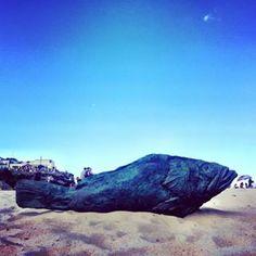 #tamaramabeach #sculpturesbythesea2017 #beach #sydney #sydney_insta #ilovesydney #visitnsw #easternsuburbs #summer #ocean #seascape #australia #australiagram #focusaustralia #discoveraustralia #laidback #lonelyplanet #ourplanetdaily #tamarama #fish #fishsculpture #sculpture #evisavvaidi #thebigfisheatsthelittleone