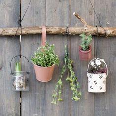 DIY – Hängen Sie Ihre Pflanzen an die Wand Garden Types, Diy Garden, Garden Art, Rustic Garden Decor, Indoor Planters, Diy Planters, Small Gardens, Outdoor Gardens, Dulux Valentine