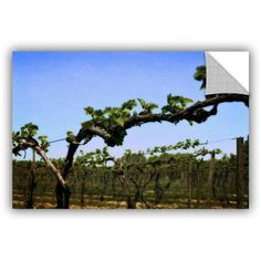 ArtWall Kevin Calkins Spring Vineyard ArtAppealz Removable Wall Art, Size: 16 x 24, Green