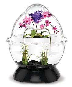 Aesthetically pleasing and durably made, this ingenuous and modern tunnel provides a 360-degree viewing angle. Plus, its positive water pressure ensures fresh water through the tunnel for fish to swim through.Includes base, dome, cap, two silicone covers and planting cup0.96' H x 0.96' diameterPlasticImported