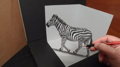 How to Draw a zebra. Awesome anamorphic illusion. Mixed media.  Materials used:   Pastell paper: light gray.    H graphit pencil (Derwent)