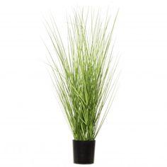 Intratuin kunstplant siergras D 30 H 66 cm Green Plants, Potted Plants, Cedar Plant, Plastic Grass, Black Planters, Floor Plants, Pot Sets, Plant Species, Types Of Plants