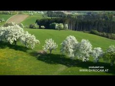▶ DIE MOSTSTRASSE VON OBEN in HDTV - YouTube Austria, High Definition, Spring Time, Golf Courses, Country Roads, Spaces, Heart, Youtube, Youtubers