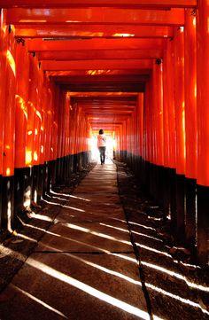 Torii gate of Fushimi Inari shrine, Kyoto, Japan