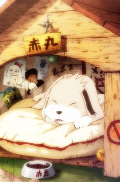 Tags: Anime, Hulfblood, NARUTO, Akamaru (NARUTO), Inuzuka Kiba, Photo (Object), Dog
