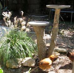 Tree stumps for bird feeders or bird baths.  I always like recycled tree stumps