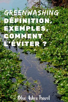 C'est quoi le greenwashing et comment l'éviter ? Blue Ash, Blog Voyage, Sustainability, France, Green Lifestyle, Travel, Diy, Carbon Footprint, Train Trip