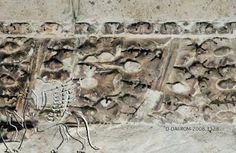 Arachne - Picture Picture: D-DAI-ROM-2008.3328_195789,10.jpg Architrave del tempio di Adriano a Roma, lacunare con foglie di quercia