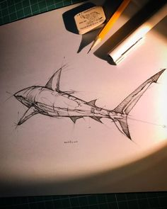 Psdelux is a pencil sketch artist based in Tatabánya, Hungary. He usually draws animal sketches. Psdelux also makes digital drawings. Animal Sketches, Animal Drawings, Cool Drawings, Pencil Drawings, Tattoo Sketches, Drawing Sketches, Tattoo Drawings, Hai Tattoos, Shark Drawing