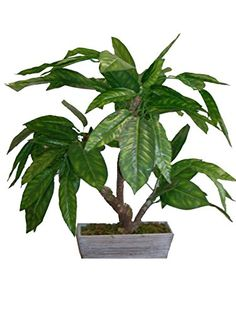 Measures 28High. Permanent Botanical. Fantastic home decor accent piece for any decor. Great gift for family or friends.