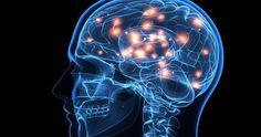 ¿Por qué se produce la muerte cerebral?