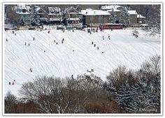 Riverdale Park - Toronto, Ontario.   Best to tobogganing!