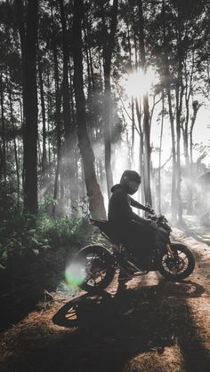Motorcycle, Bicycle, Forest, Tree Wallpaper for Android [Full HD], Motorcycles Background and Image Motocross Photography, Motorcycle Photography, Harley Davidson Wallpaper, Harley Davidson Pictures, Bike Photoshoot, Motorcycle Wallpaper, Background Images, Motorbikes, Woodland