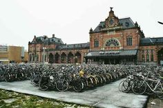 The most bicycle friendly city in the world: Groningen, Netherlands By comparing cities along the criterion of average number of bicycle tr. Delft, Central Station, World Cities, Number One, Barcelona Cathedral, Netherlands, Amsterdam, Dutch, Beautiful Places