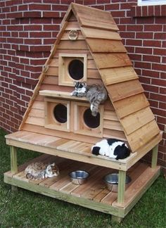 Outdoor cat houses. It might be a good way to recycle some old pallets by dirench