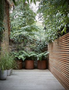 Keep it simple with this contemporary garden design, perfect for late night cocktails Small Courtyard Gardens, Small Courtyards, Small Gardens, Outdoor Gardens, Small City Garden, Modern Gardens, Large Garden Pots, Large Pots, Back Gardens