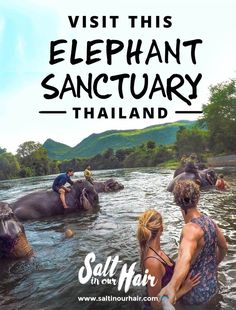 Take your trip with Glamulet charmsWe all want to ride elephants in Thailand. Make sure to pick the right places. The elephant sanctuary in Thailand is one you can trust in our opinion. Thailand Vacation, Thailand Travel Guide, Asia Travel, Phuket Thailand, Honeymoon In Thailand, Backpacking Thailand, Chiang Mai Thailand, Thailand Tourism, Backpacking Trips