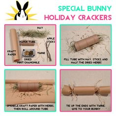 Alright all you DIY bunny lovers, here's a toy you can make your love bun for the holidays or just because! Hope you like it! I've made these toys for gerbils. Rabbit Treats, Rabbit Toys, Pet Rabbit, Pet Treats, Diy Bunny Toys, Diy Toys, Toy Diy, Indoor Rabbit, Sock Bunny