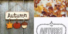 Autumn ☺ 素敵組合わせ画像989×495
