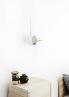 DIY Paper Mache Airplant Pod