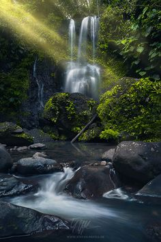 Waterfall in Guadeloupe, French Caribbean