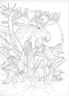 Bergsma Gallery Press :: Paintings :: Originals :: Original Sketches :: 2006 / Sometimes I'm By Myself, But I'm Never A Loon - Original Sketch *wp* Animal Coloring Pages, Coloring Book Pages, Coloring Sheets, Wood Burning Patterns, Wood Burning Art, Line Drawing, Painting & Drawing, Animal Drawings, Art Drawings