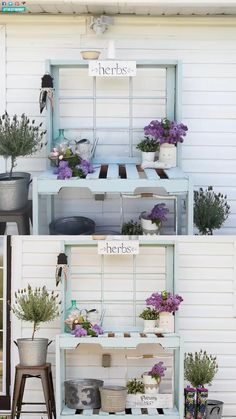 Learn how to build a potting bench from pallets, recycled lumber and an antique window with this step-by-step tutorial. This rustic, shabby chic DIY is perfect for your farmhouse style garden! Rustic Shutters, Diy Shutters, Farmhouse Shutters, Repurposed Shutters, Pallet Potting Bench, Potting Tables, Rustic Potting Benches, Pallet Projects, Garden Projects