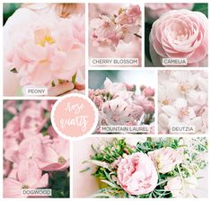 Matching Flowers With Pantone Colors • Kelly Bernier Designs