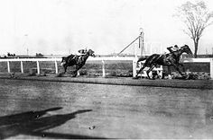 Man o' War - His final start, a match race with 1919 Triple Crown winner Sir Barton, was another runaway victory.