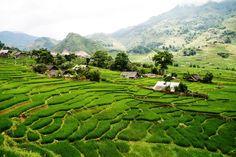 Sa Pa - Vietnam