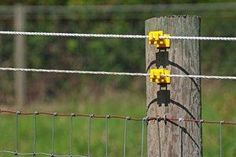 Install an Electric Fence
